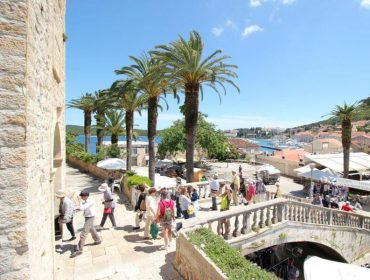 Wine-Tours_Korcula-Peljesac-Tour_gallery-1