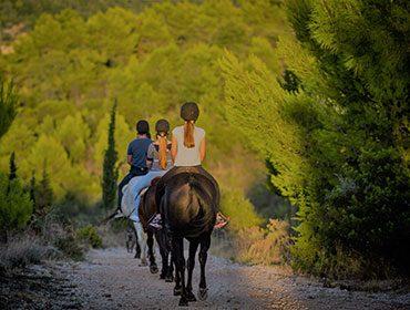 horse_tour_fet_img